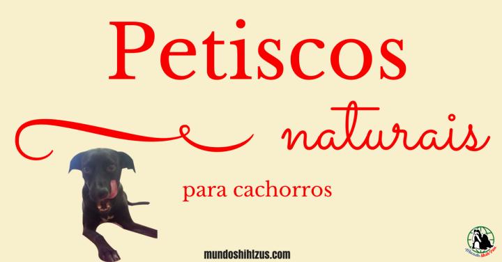 Petiscos naturais fáceis e práticos paracachorros